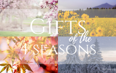 Gifts of The 4 Seasons